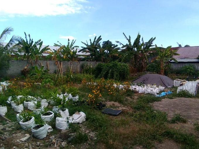 Tanah Perkarangan Pagar Keliling Gebang 543M2